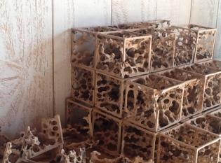 wood work, working process (3)